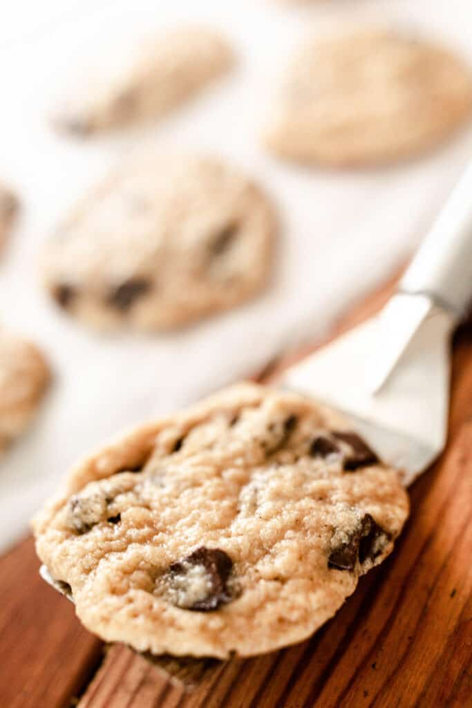 sourdough chocolate chip cookies on a spatula